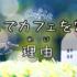 絶景・川ドライブの休憩スポット「cawa cafe(カワ・カフェ)」宮城県・丸森町【第3回】