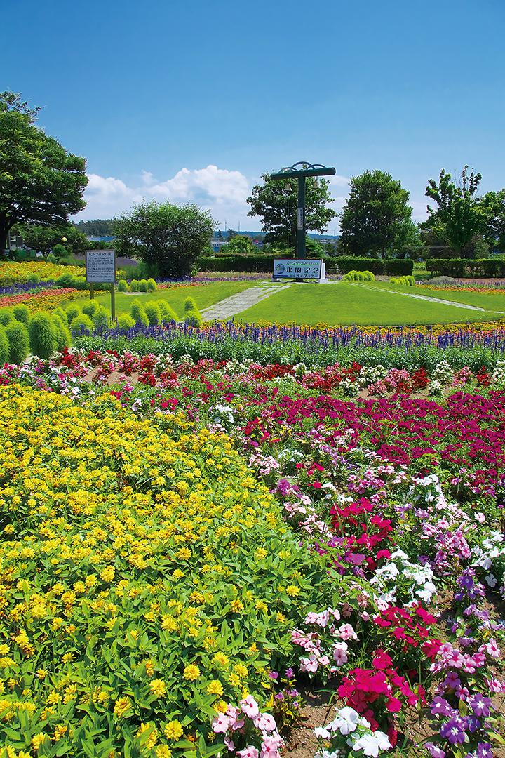 四季を通じて花々が咲き乱れる。写真は昨年7月に撮影