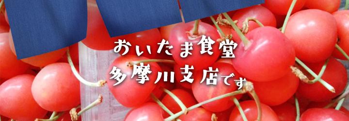 【レシピ付】赤の果実と白・水切りヨーグルトとサクランボのデザート