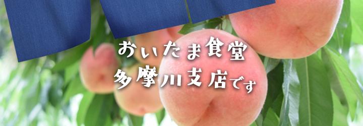 【レシピ付】優しい甘さ 淡い淡い桃のミルクシャーベット