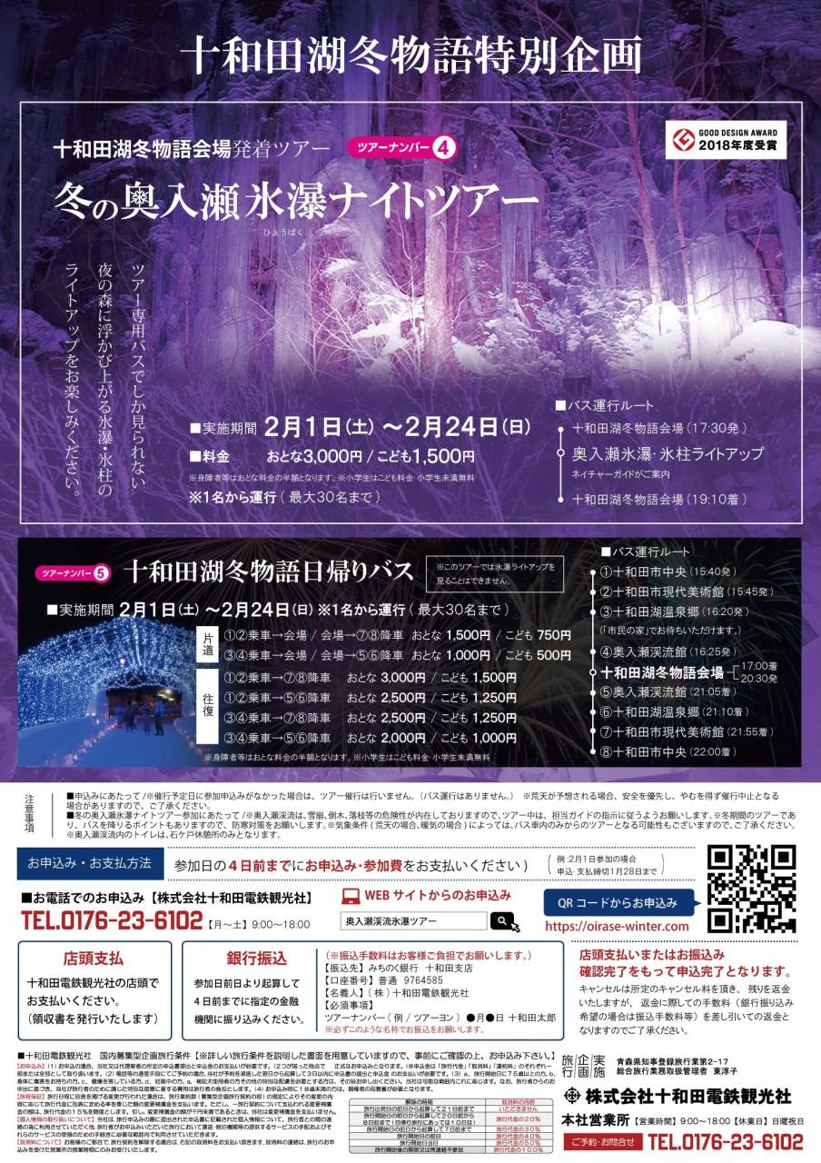 冬の奥入瀬氷瀑ナイトツアー【十和田湖冬物語発】