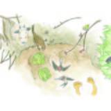 【清明】いわて暮らしの季節暦【春到来】