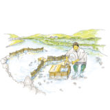 【小満】いわて暮らしの季節暦【シロウオ漁】