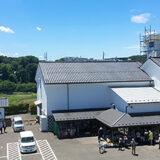 道の駅村田 今年もそら豆が最盛期!